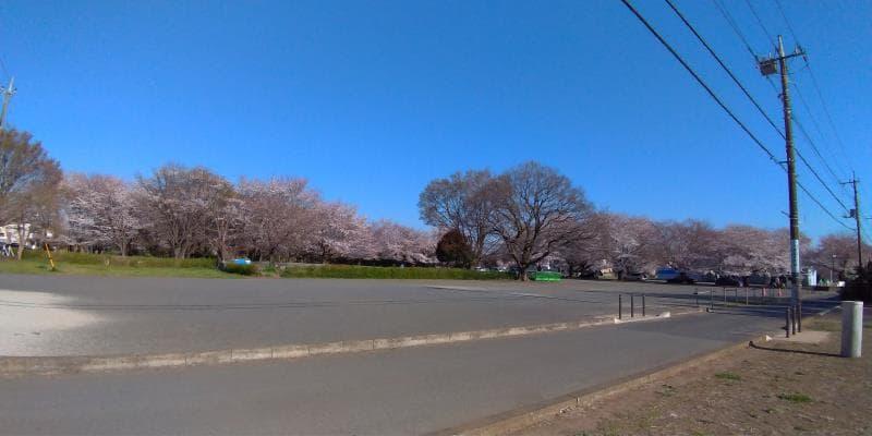 武蔵国分寺跡は史跡だけに開発がされず空が広い