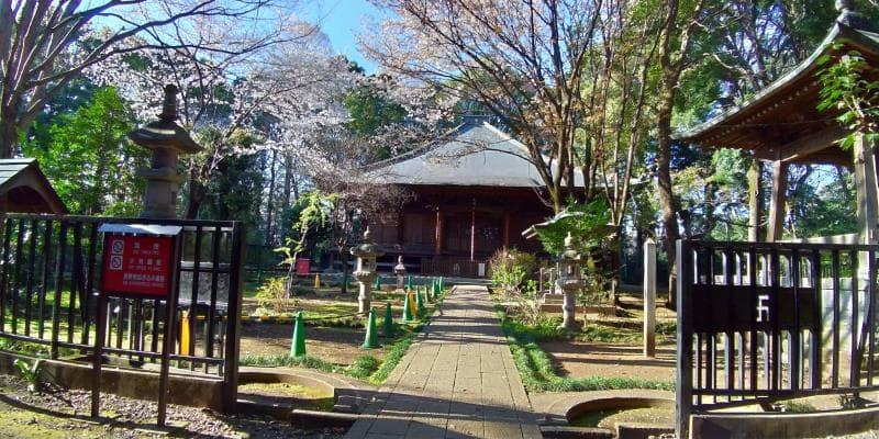 国分寺薬師堂の様子