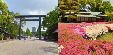 写真左、靖國神社の鳥居。写真右、皇居のツツジ