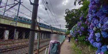 高架を走る京浜東北線とブルーのアジサイ