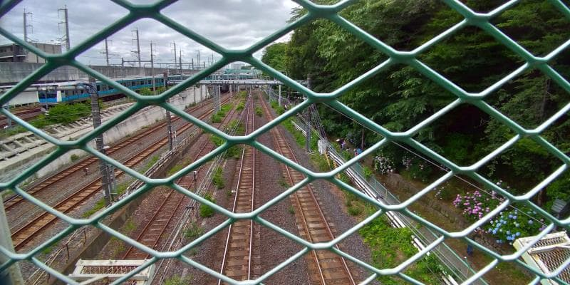 橋の下には6本もの線路が伸びる