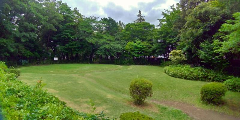 木々に囲まれた小さな芝生