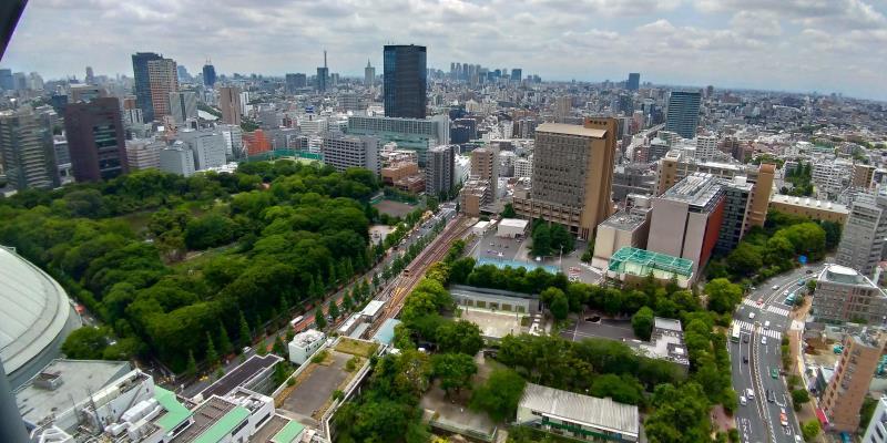 ビルの合間に広がる緑。右下には東京ドーム