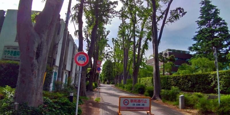 正門の左の眺め。車両通行禁止の立て札