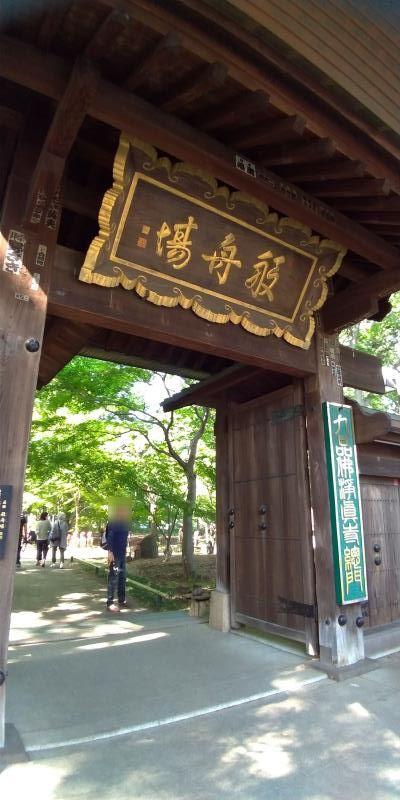 木でできた門を見上げる