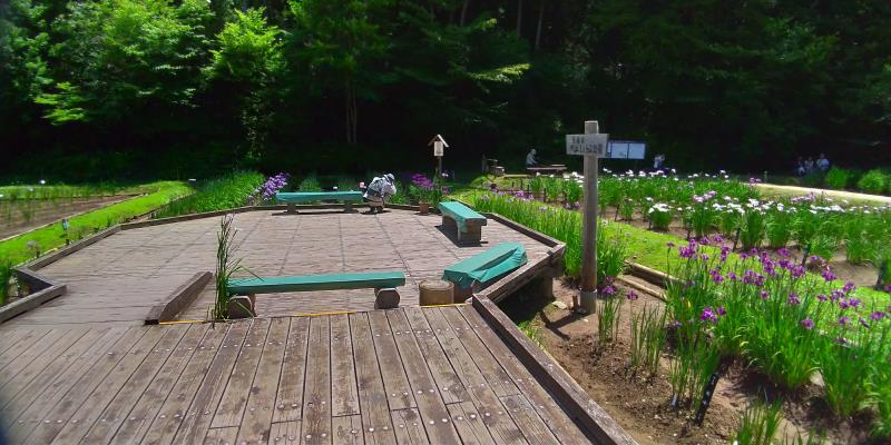 木道に設けられた簡易的なベンチ
