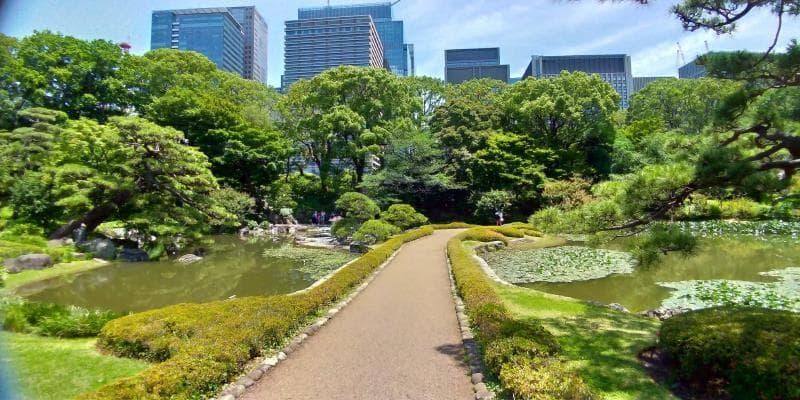 二の丸庭園の池をわたる