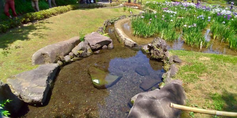 菖蒲田傍の透明な水