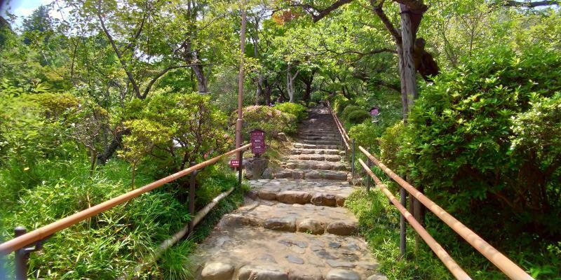 百草園園内の階段