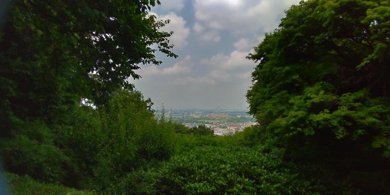 百草園からの眺望