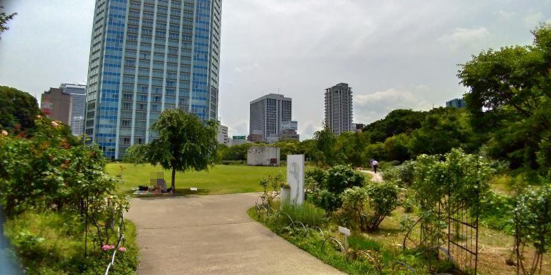 正面に巨大なタワーホテルが見える芝生広場
