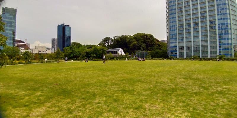 比較的広めの芝生