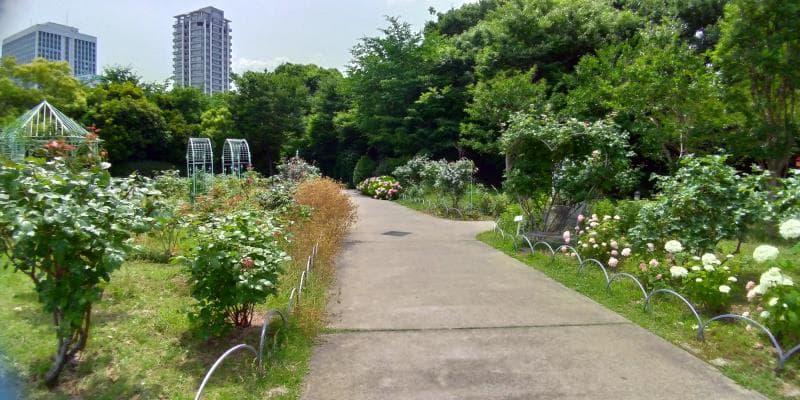 小径沿いのガーデンには花が咲く