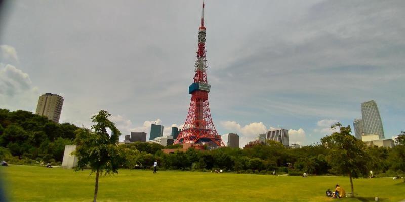 芝生と東京タワー