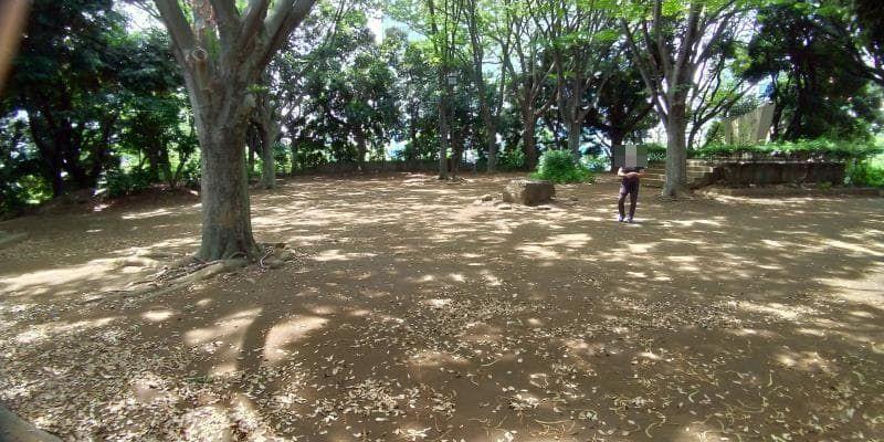 木々に囲まれ日陰の多い広場