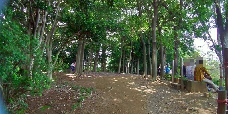 見晴らしの良い雑木林