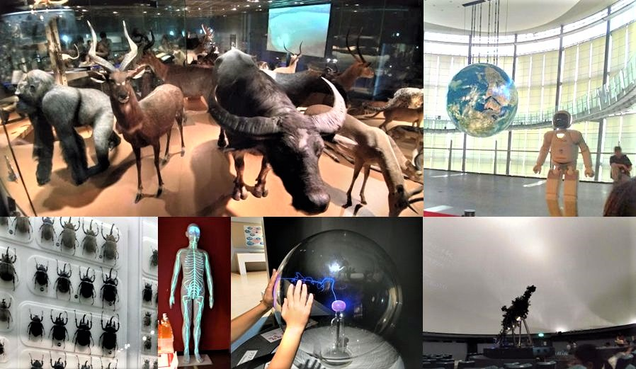 科学館の色々な写真