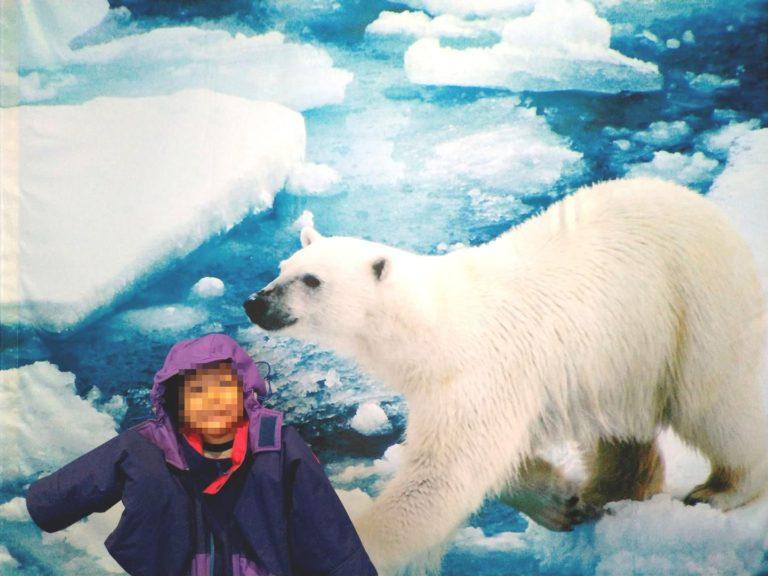 南極 に あっ て 北極 に ない もの