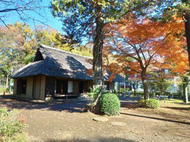 江戸東京たてもの園の紅葉